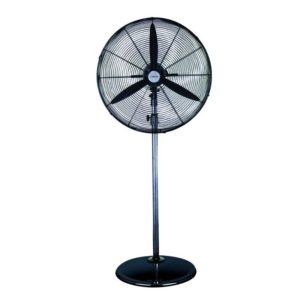 Rexton Pedestal Fan
